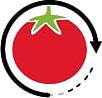 transformation de tomates